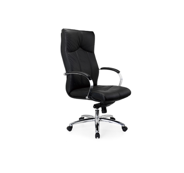 Buy A GM Series High Back Executive Chair Online Executive Office Chairs O