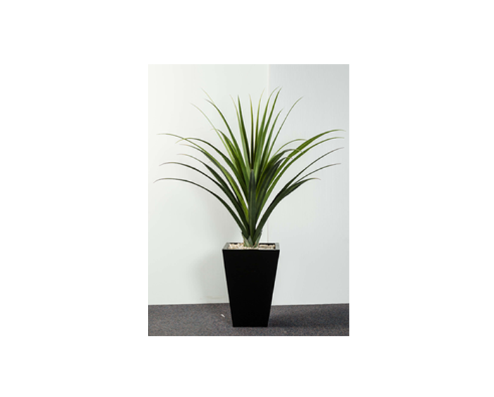 buy a pandanus online office accessories direct office